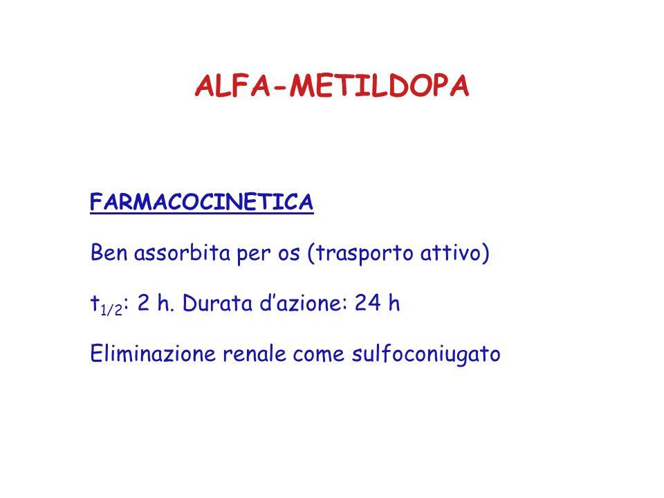ALFA-METILDOPA FARMACOCINETICA Ben assorbita per os (trasporto attivo)