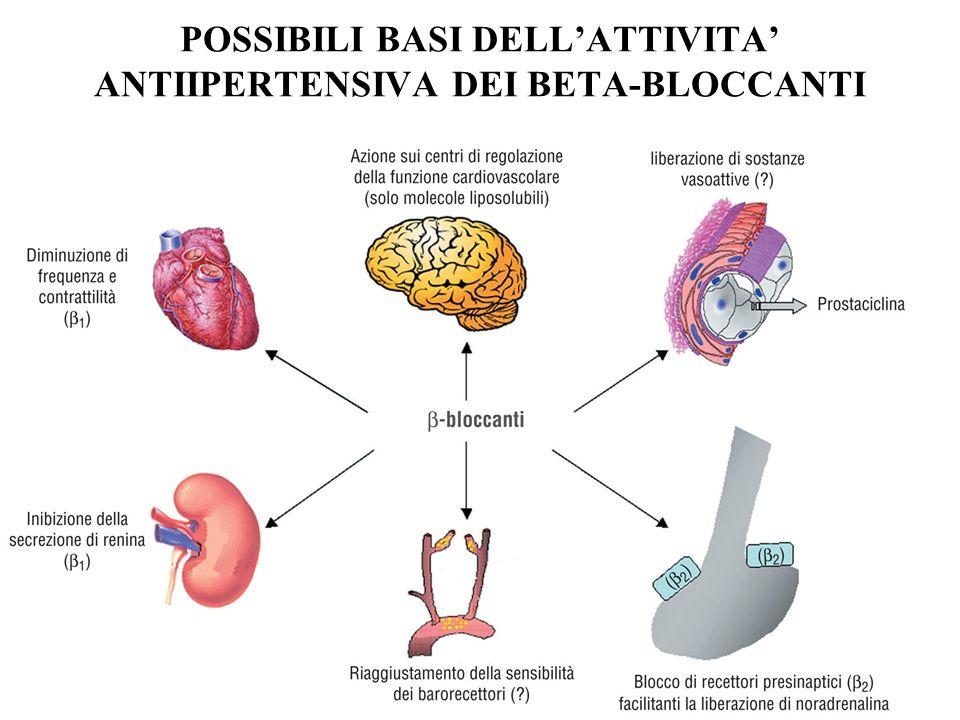 POSSIBILI BASI DELL'ATTIVITA' ANTIIPERTENSIVA DEI BETA-BLOCCANTI