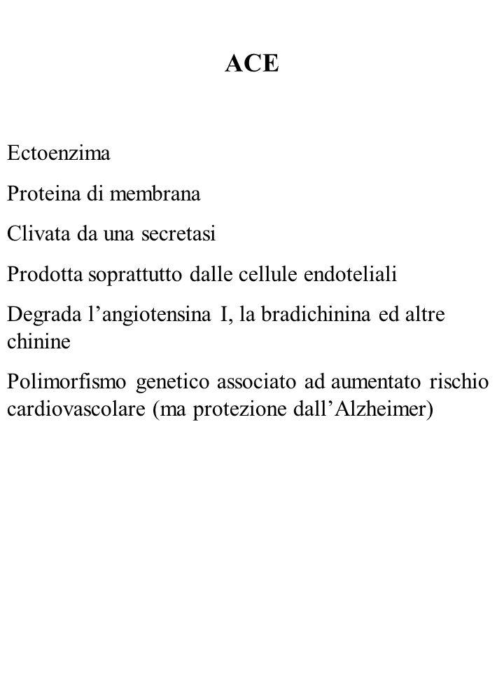 ACE Ectoenzima Proteina di membrana Clivata da una secretasi