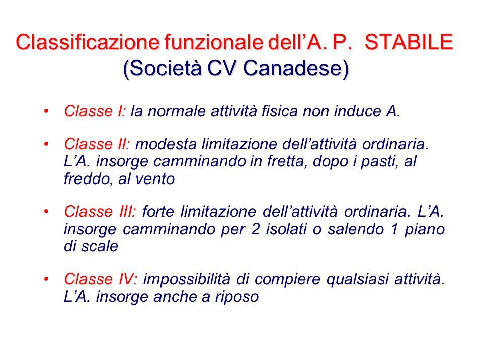 Classificazione funzionale dell'A. P. STABILE (Società CV Canadese)