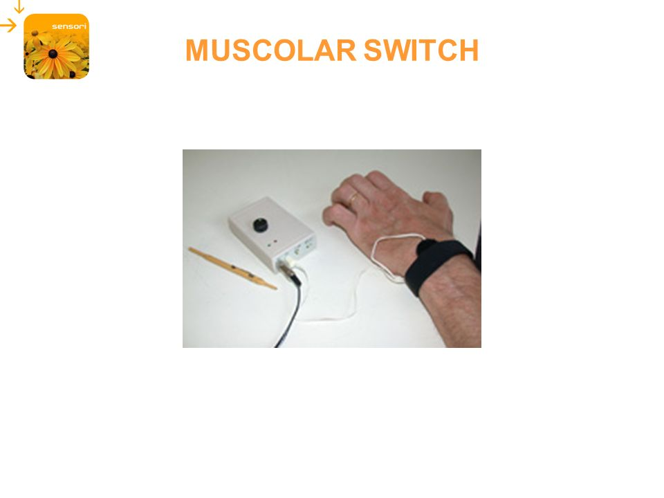 MUSCOLAR SWITCH 35