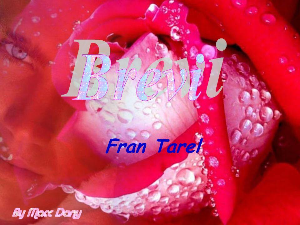 Brevi Fran Tarel