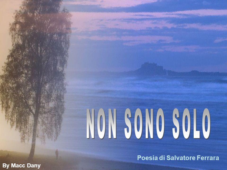 NON SONO SOLO Poesia di Salvatore Ferrara By Macc Dany