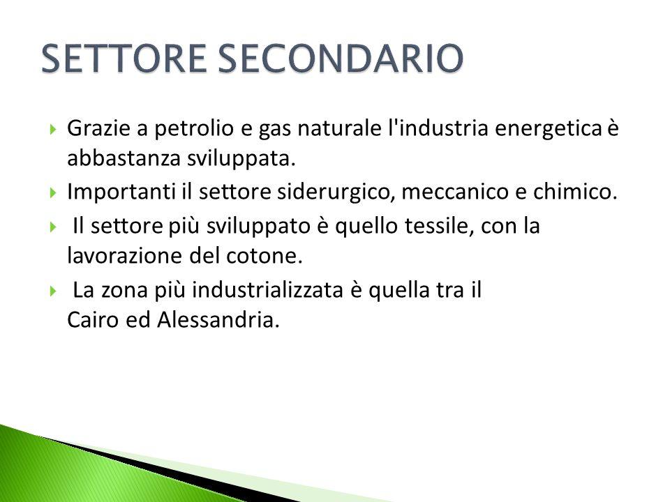 SETTORE SECONDARIO Grazie a petrolio e gas naturale l industria energetica è abbastanza sviluppata.