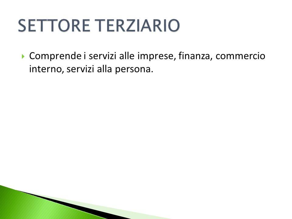 SETTORE TERZIARIO Comprende i servizi alle imprese, finanza, commercio interno, servizi alla persona.