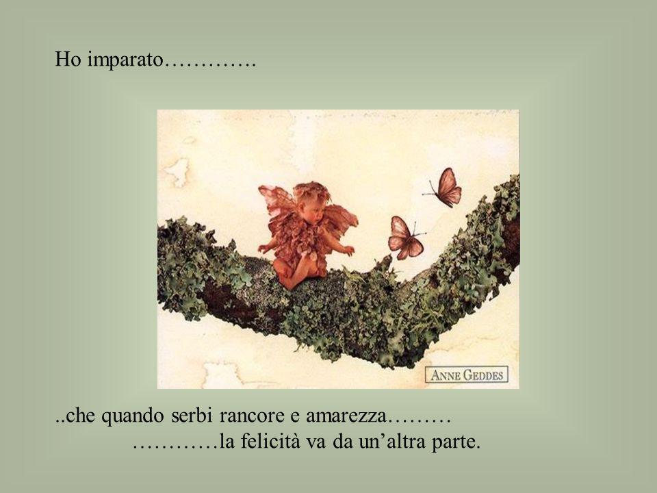 Ho imparato…………. ..che quando serbi rancore e amarezza……… …………la felicità va da un'altra parte.