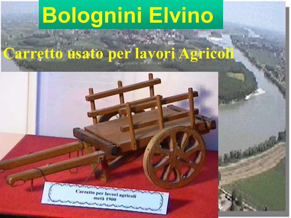 Bolognini Elvino Carretto usato per lavori Agricoli