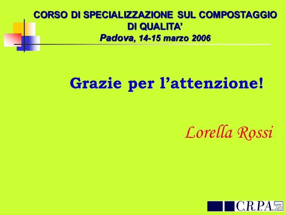 Lorella Rossi Grazie per l'attenzione!