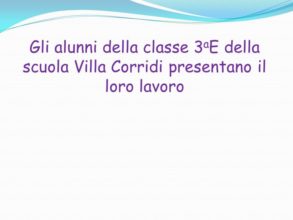 Gli alunni della classe 3aE della scuola Villa Corridi presentano il loro lavoro