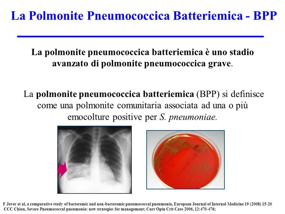 La Polmonite Pneumococcica Batteriemica - BPP