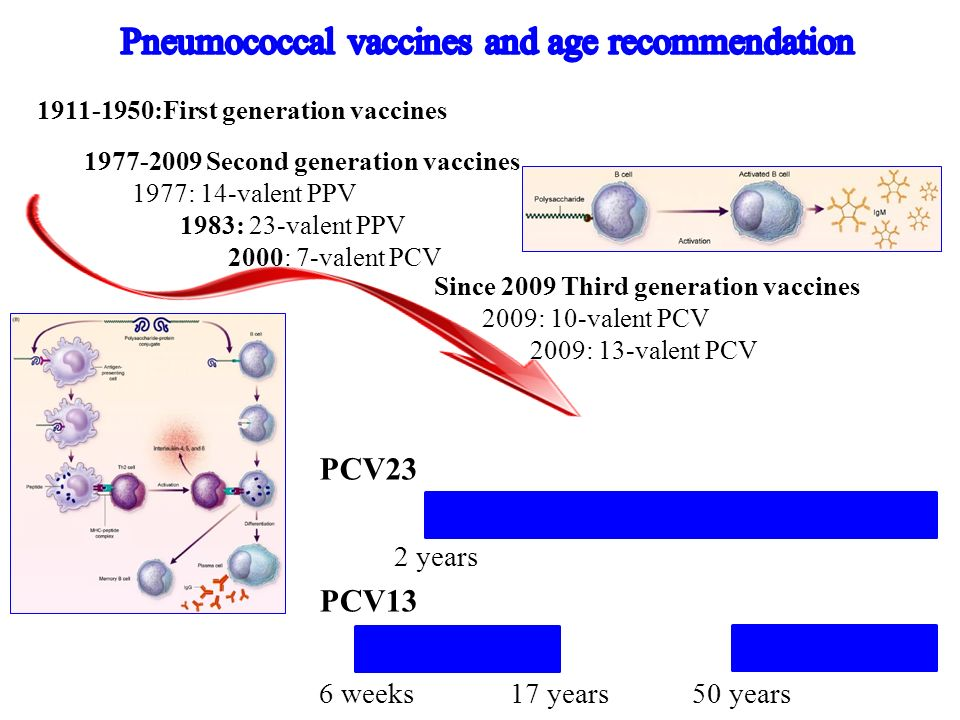 Pneumococcal vaccines and age recommendation