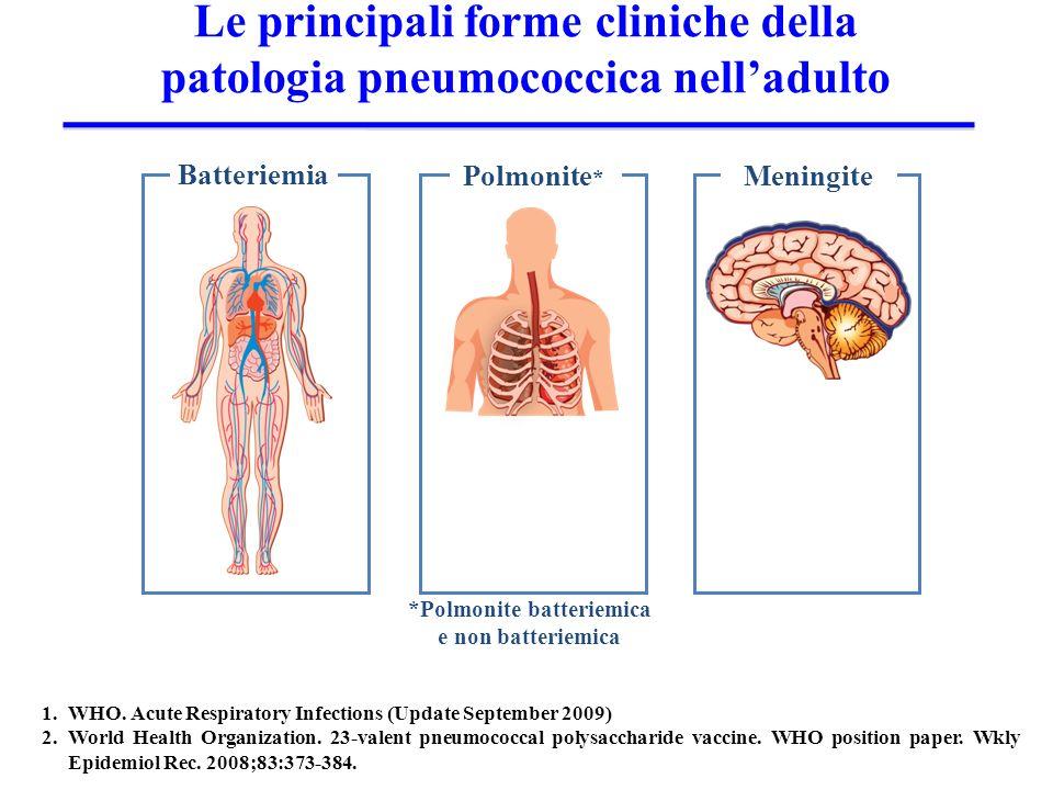 Le principali forme cliniche della patologia pneumococcica nell'adulto