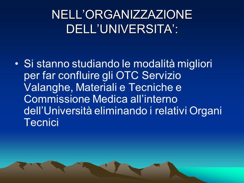 NELL'ORGANIZZAZIONE DELL'UNIVERSITA':