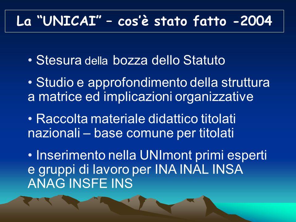 La UNICAI – cos'è stato fatto -2004