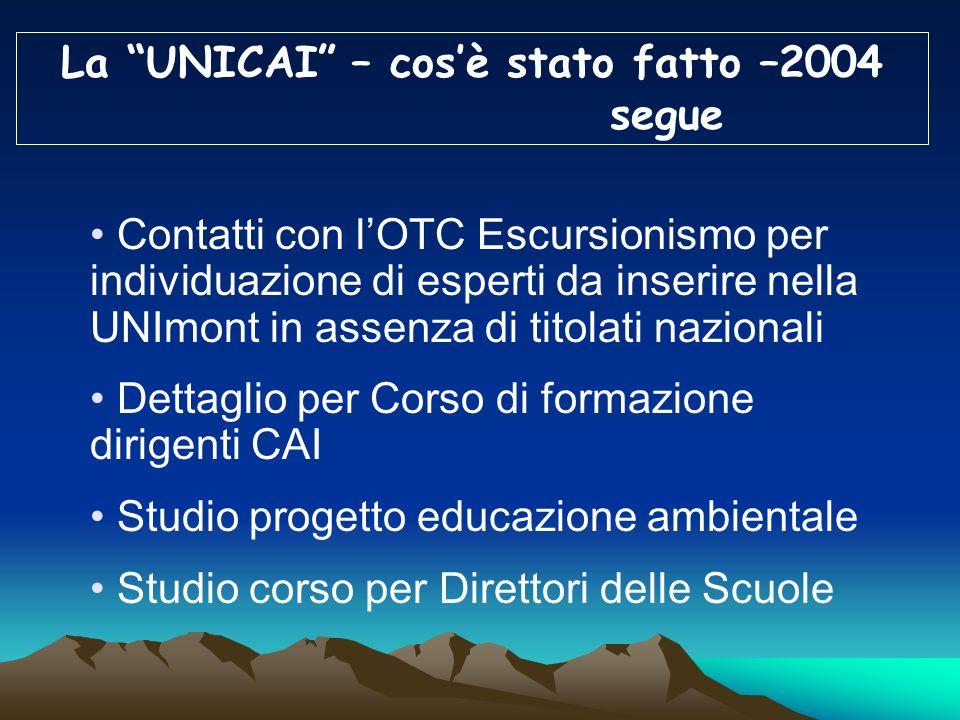 La UNICAI – cos'è stato fatto –2004
