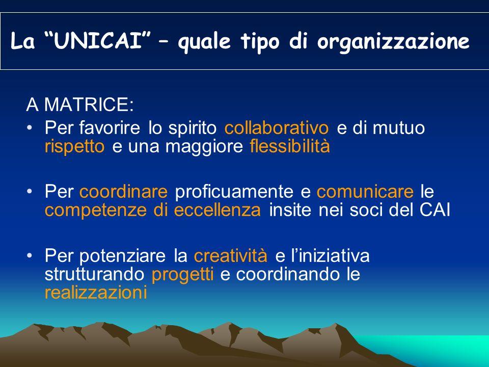 La UNICAI – quale tipo di organizzazione