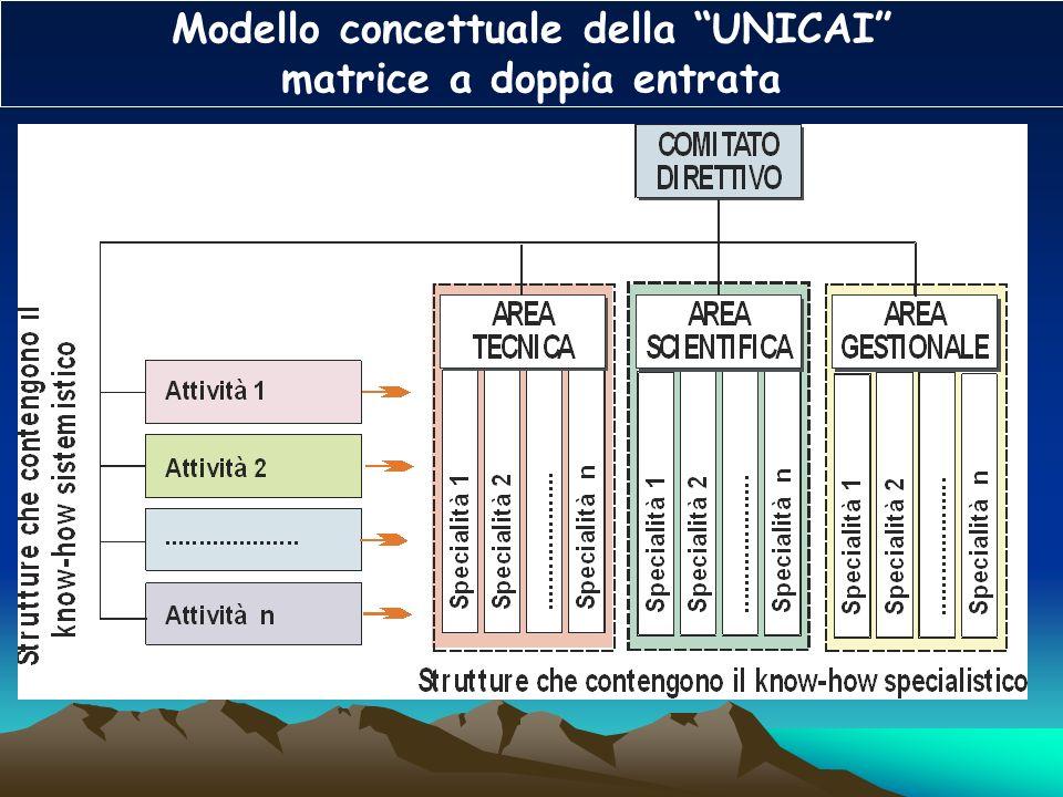 Modello concettuale della UNICAI matrice a doppia entrata