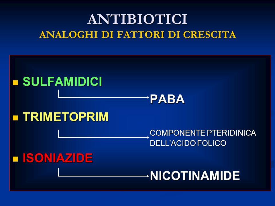 ANTIBIOTICI ANALOGHI DI FATTORI DI CRESCITA