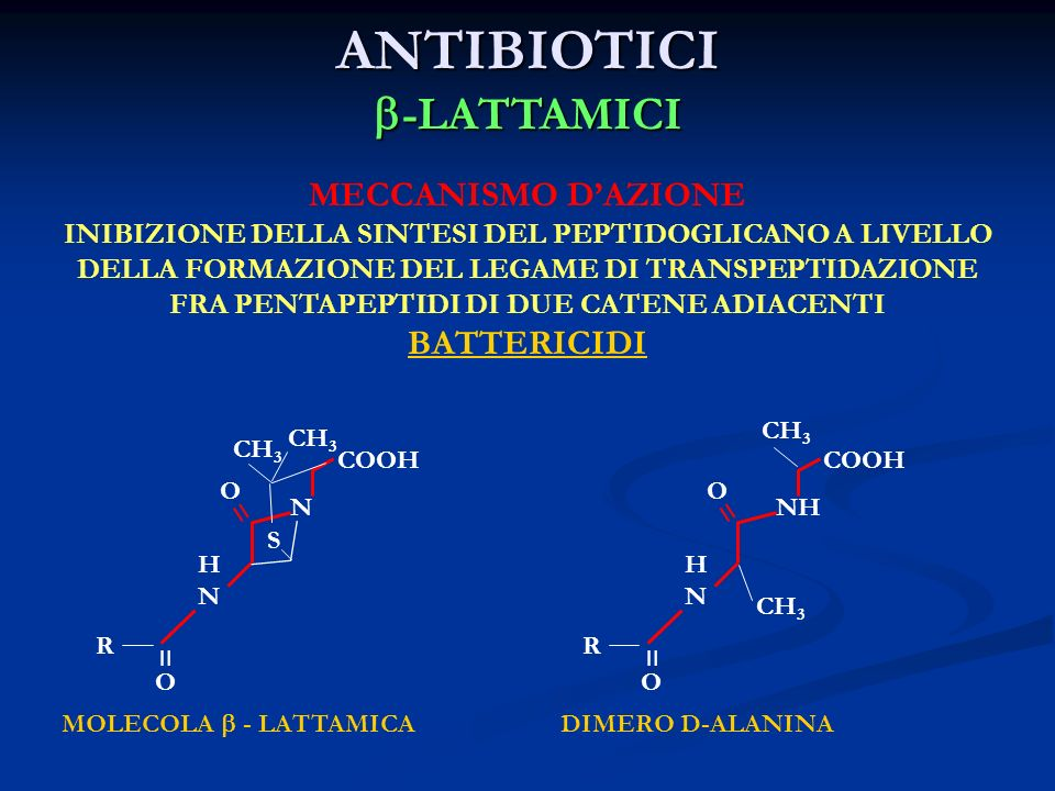 ANTIBIOTICI b-LATTAMICI