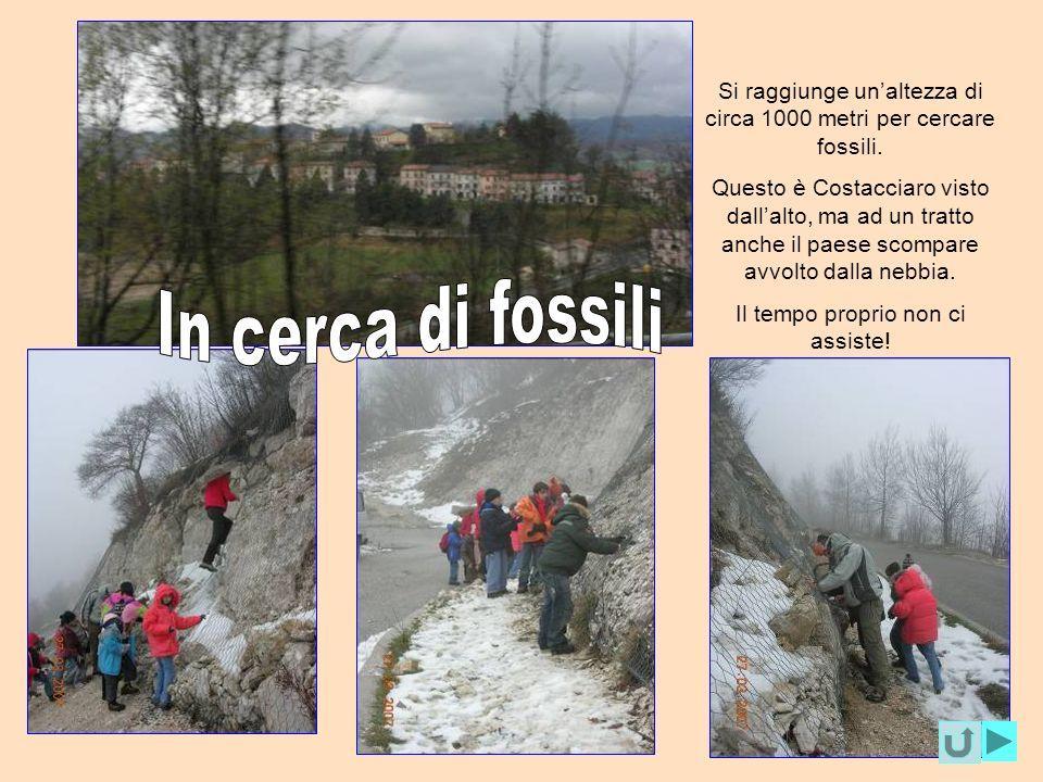 Si raggiunge un'altezza di circa 1000 metri per cercare fossili.