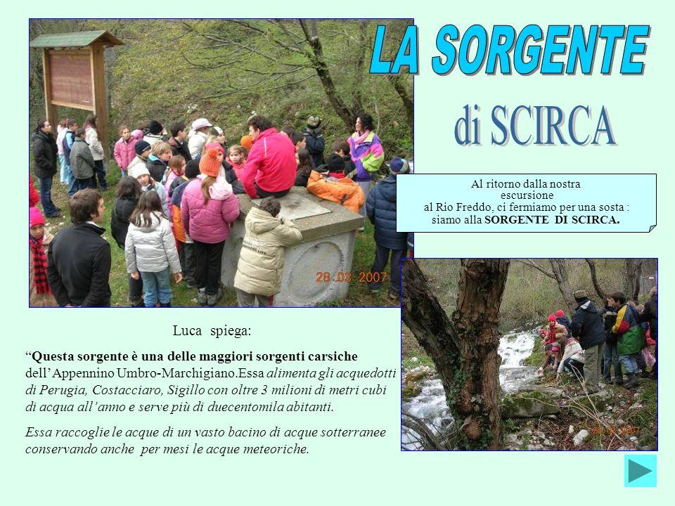 LA SORGENTE di SCIRCA Luca spiega: