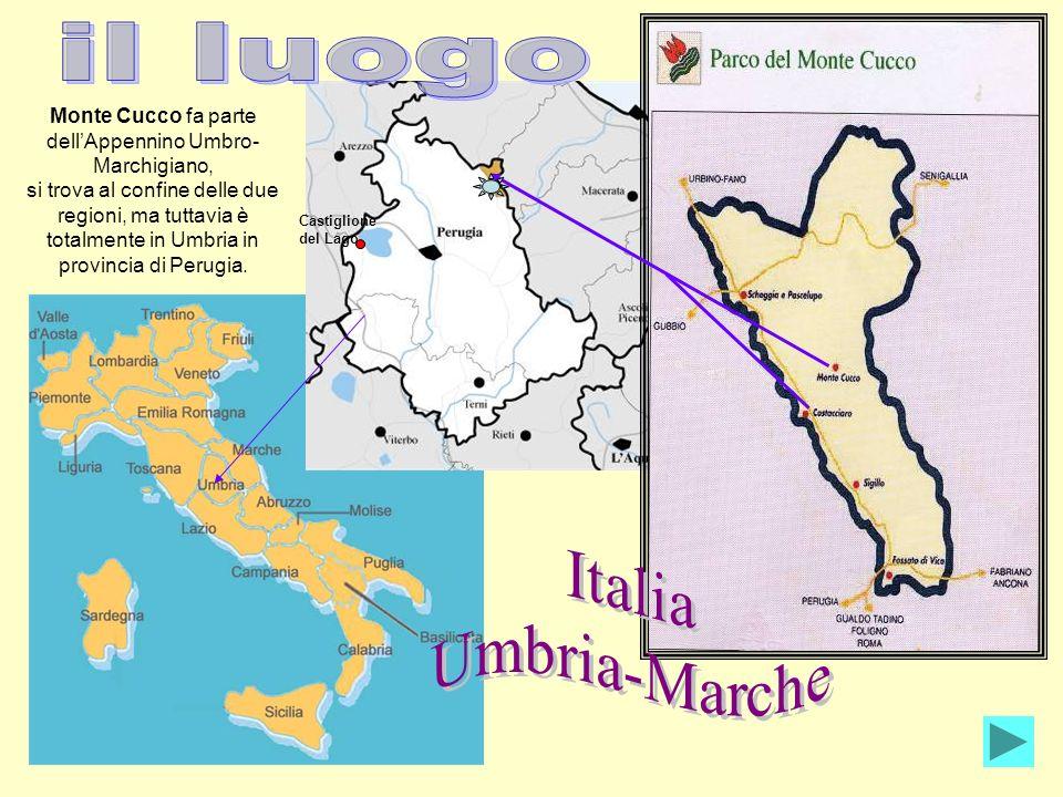 Monte Cucco fa parte dell'Appennino Umbro-Marchigiano,