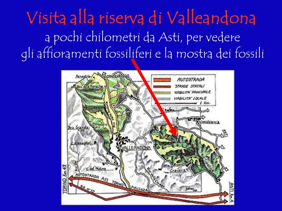 Visita alla riserva di Valleandona