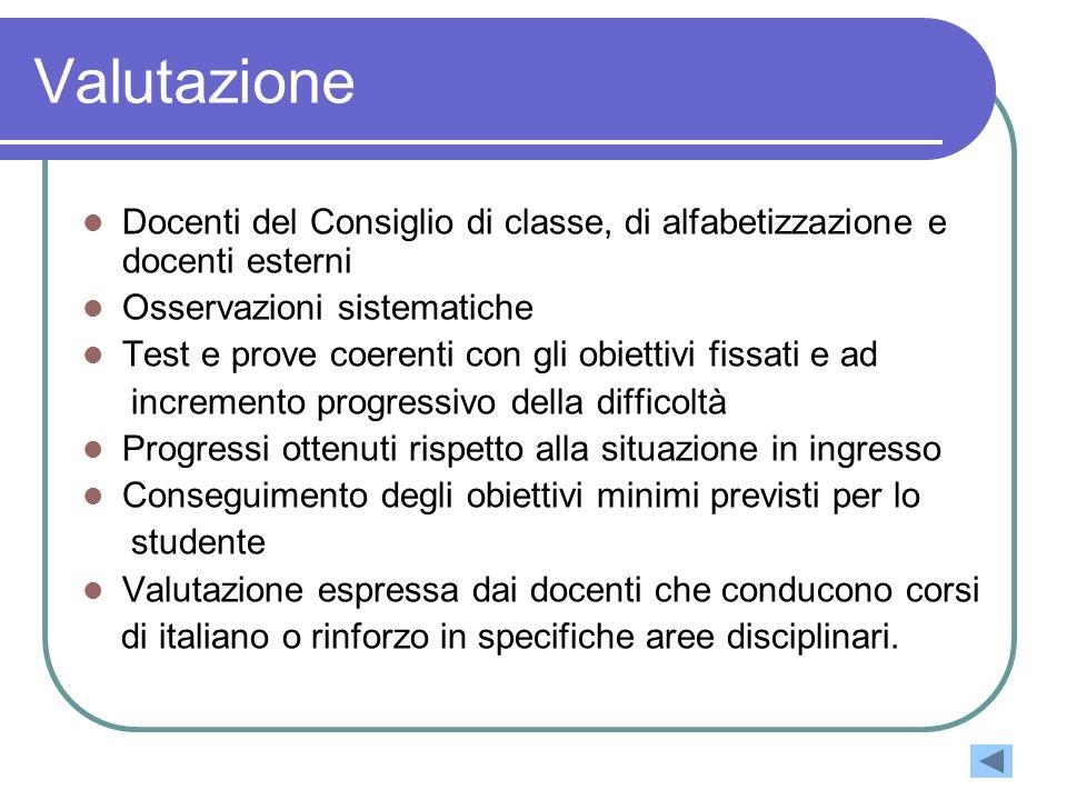 Valutazione Docenti del Consiglio di classe, di alfabetizzazione e docenti esterni. Osservazioni sistematiche.