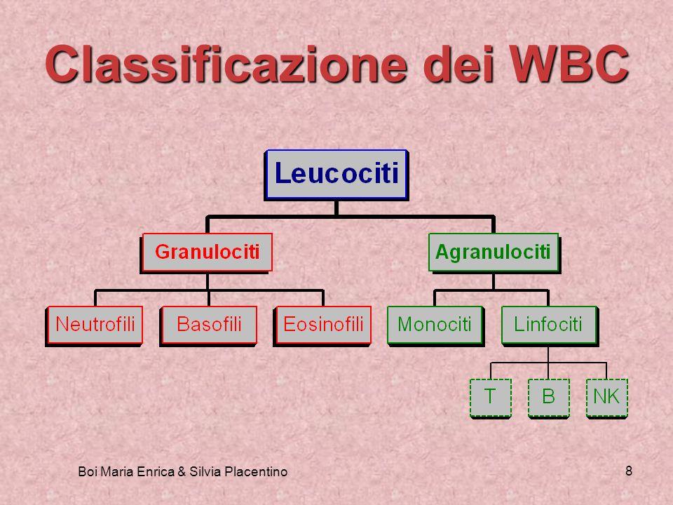 Classificazione dei WBC