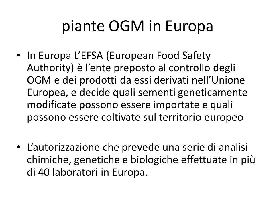 piante OGM in Europa