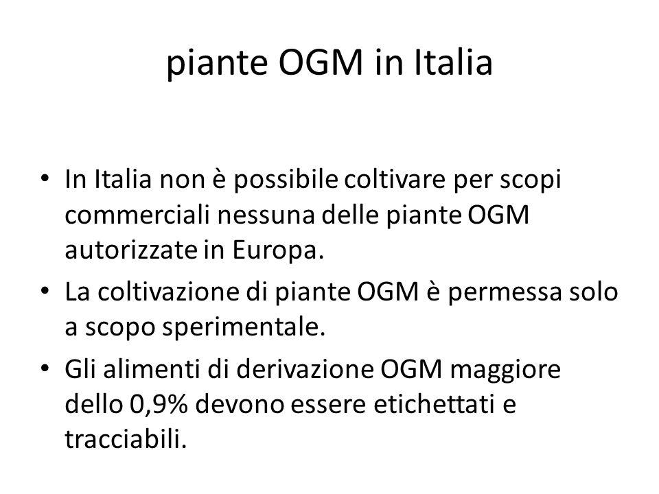 piante OGM in Italia In Italia non è possibile coltivare per scopi commerciali nessuna delle piante OGM autorizzate in Europa.
