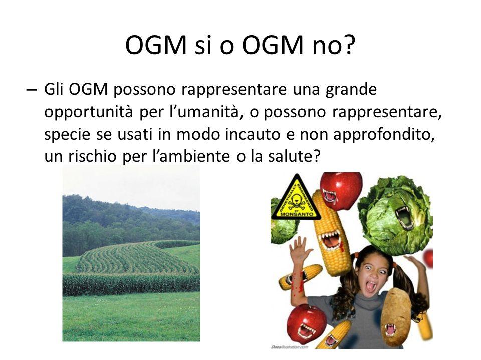 OGM si o OGM no