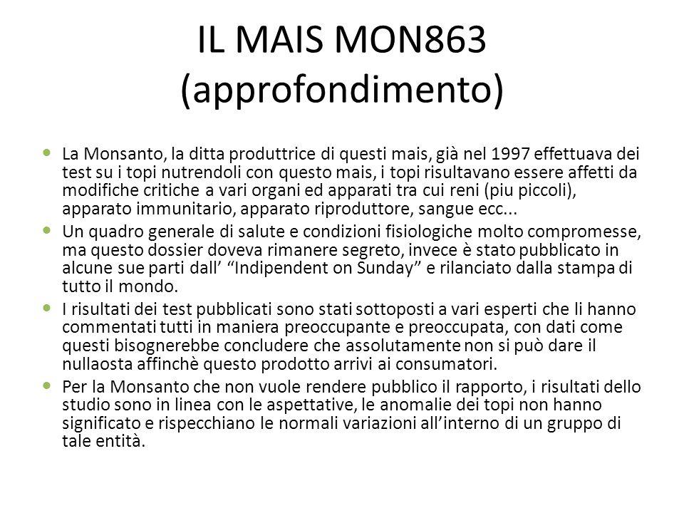 IL MAIS MON863 (approfondimento)