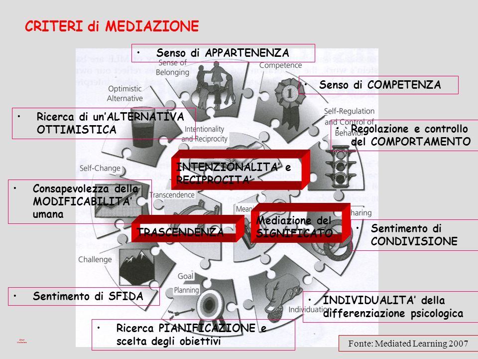 Fonte: Mediated Learning 2007