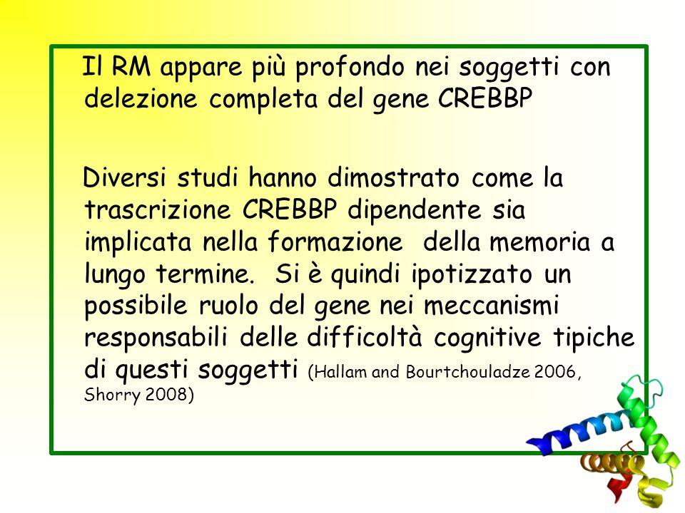 Il RM appare più profondo nei soggetti con delezione completa del gene CREBBP