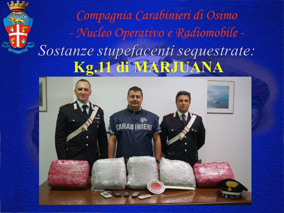 Sostanze stupefacenti sequestrate: Kg.11 di MARJUANA