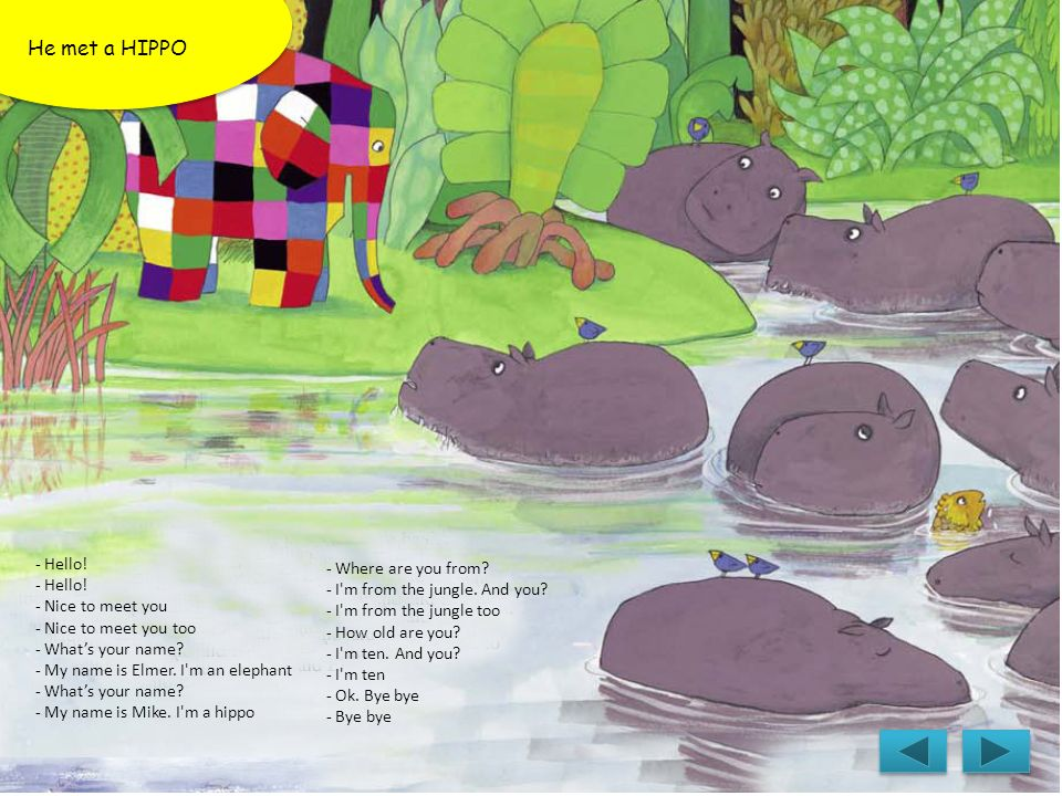 He met a HIPPO - Hello! - Where are you from
