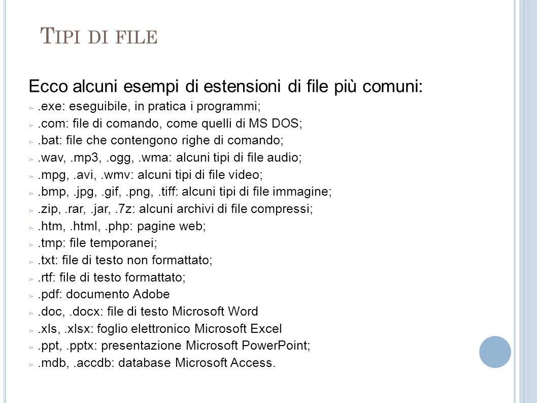Tipi di file Ecco alcuni esempi di estensioni di file più comuni: