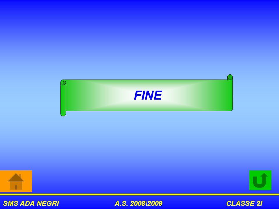 FINE SMS ADA NEGRI A.S. 2008\2009 CLASSE 2I