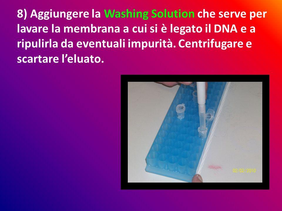 8) Aggiungere la Washing Solution che serve per lavare la membrana a cui si è legato il DNA e a ripulirla da eventuali impurità.