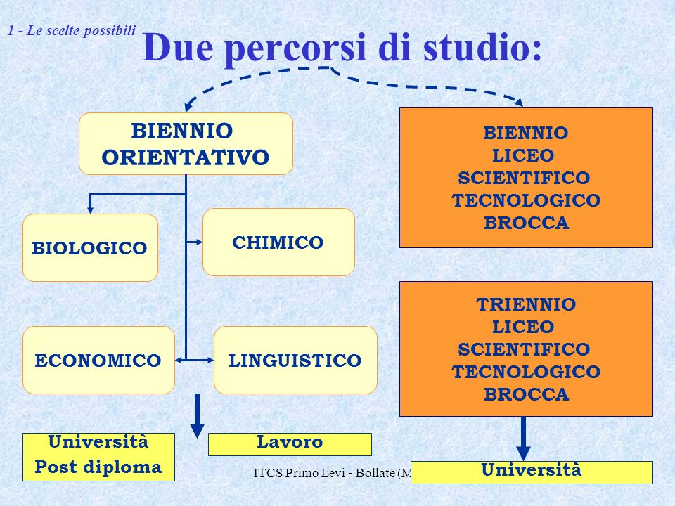 Due percorsi di studio: