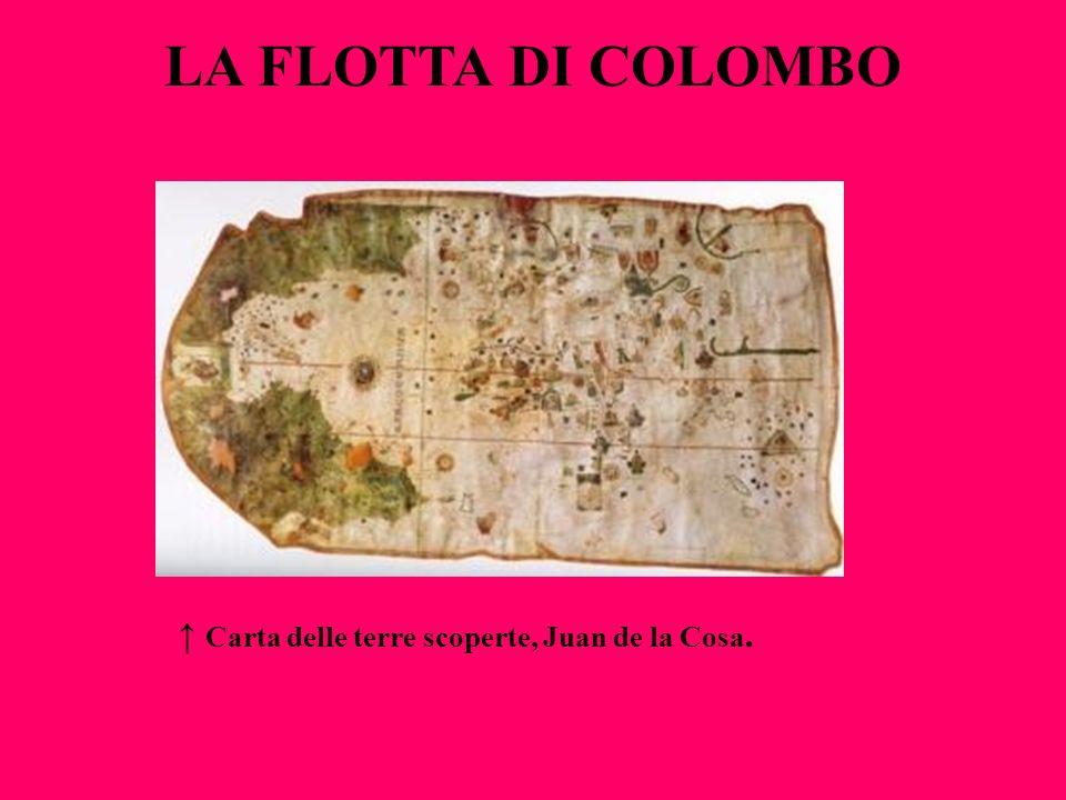 La Flotta di Colombo ↑ Carta delle terre scoperte, Juan de la Cosa.