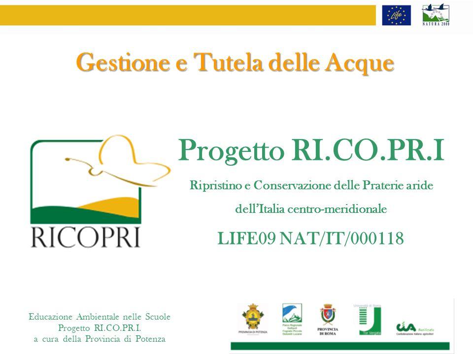 Progetto RI.CO.PR.I Gestione e Tutela delle Acque LIFE09 NAT/IT/000118