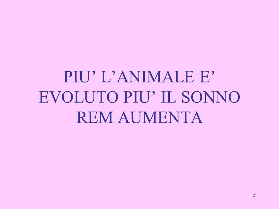 PIU' L'ANIMALE E' EVOLUTO PIU' IL SONNO REM AUMENTA