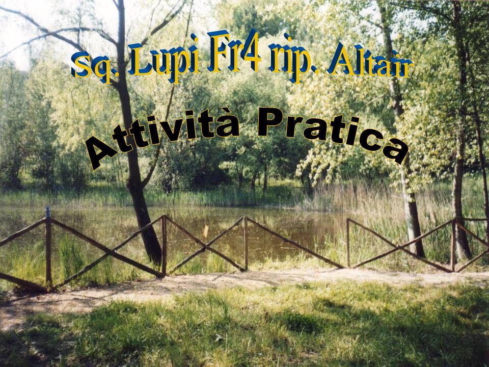 Sq. Lupi Fr4 rip. Altair Attività Pratica