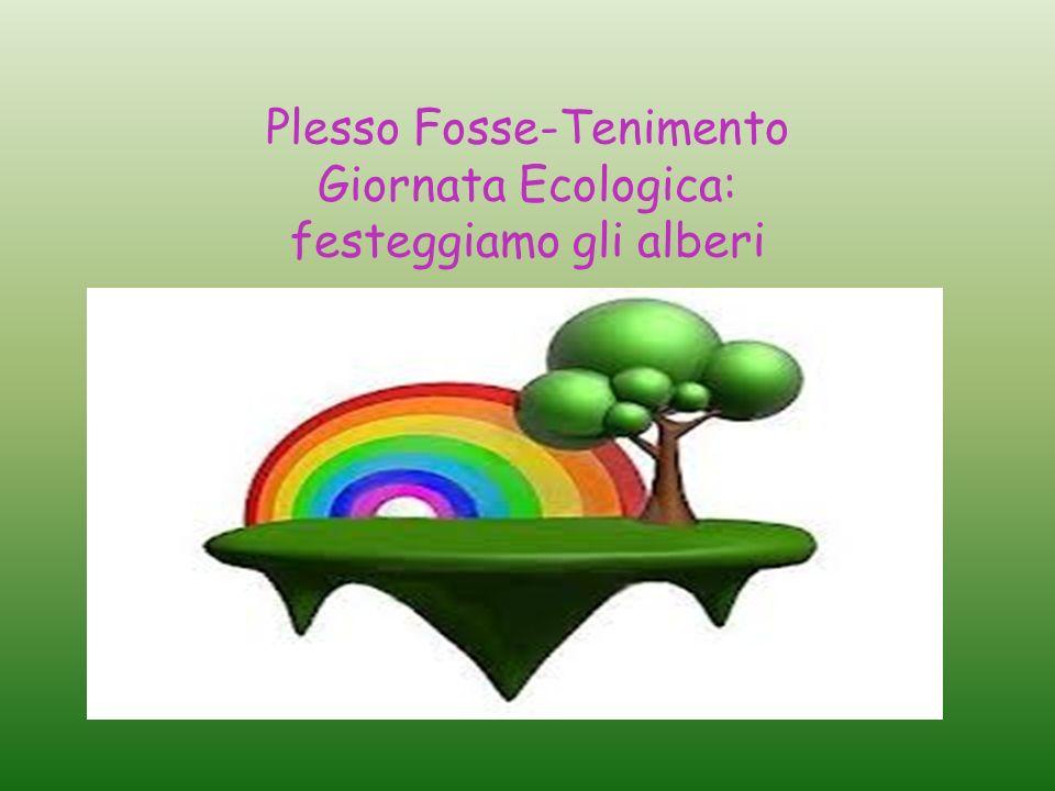 Plesso Fosse-Tenimento Giornata Ecologica: festeggiamo gli alberi