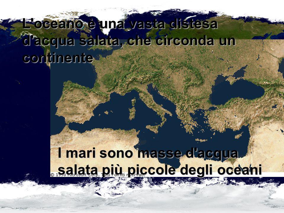 I mari sono masse d acqua salata più piccole degli oceani