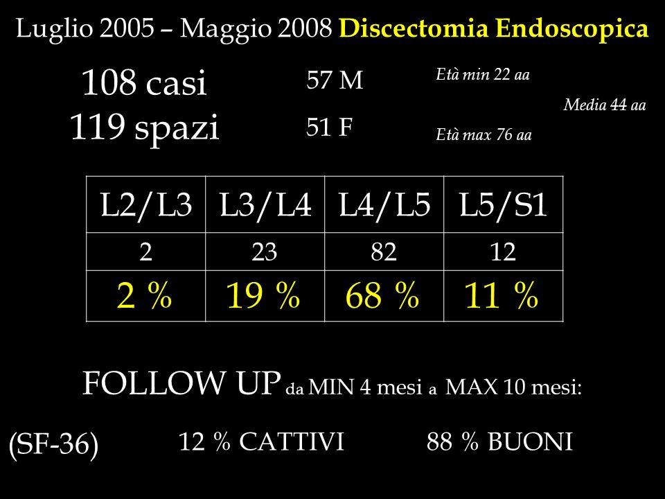 108 casi 119 spazi 2 % 19 % 68 % 11 % L2/L3 L3/L4 L4/L5 L5/S1