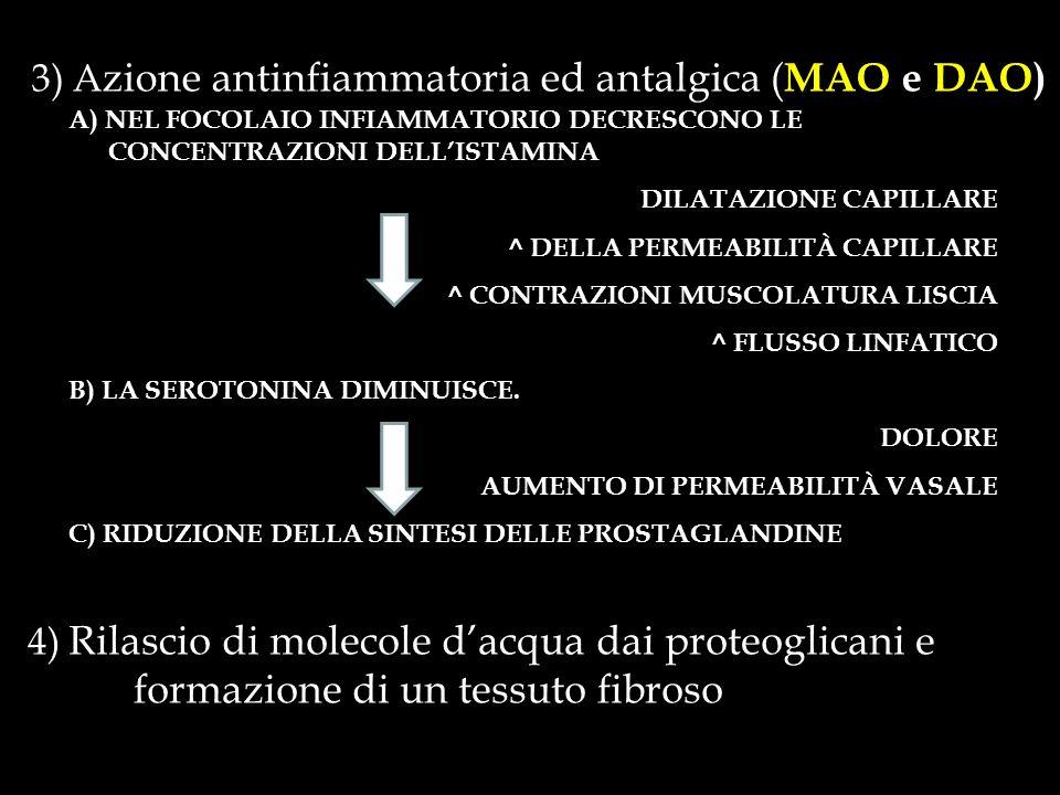 3) Azione antinfiammatoria ed antalgica (MAO e DAO)