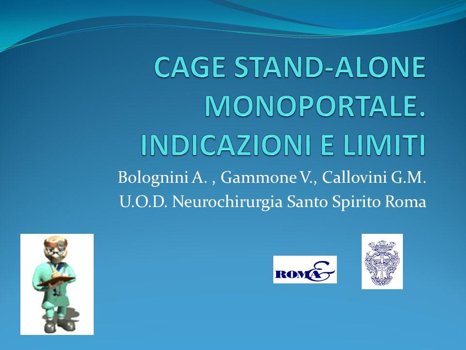 CAGE STAND-ALONE MONOPORTALE. INDICAZIONI E LIMITI